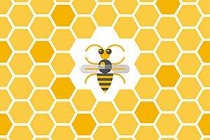 Sustainable Beekeeping